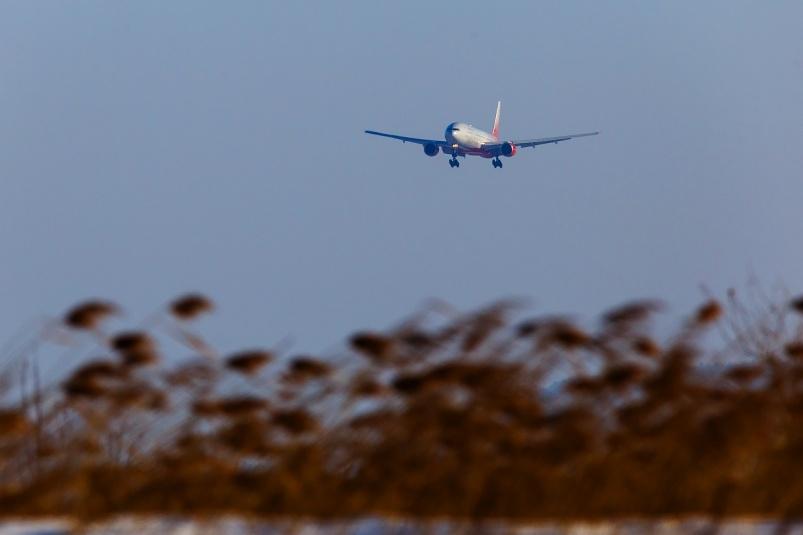 Льготные билеты на самолеты в России будут продавать по-другому