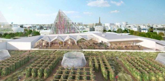 Огород с видом на Эйфелеву башню: в Париже построят огромную ферму на крыше